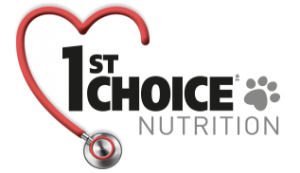 logo_first_choice